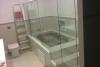 Box para Banheiro e Vidro Temperado